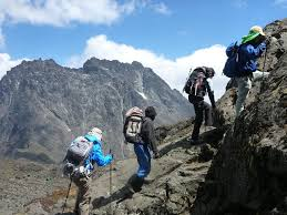 7 Days Rwenzori Hiking Uganda Trekking Safari / 7 Days Uganda Hiking Safari to Rwenzori Mountain National Park-Uganda Safari News