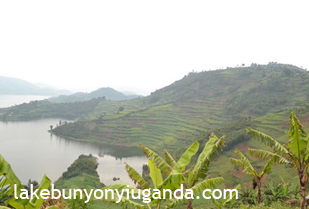 Scenery Of Lake Bunyonyi From One The Lodges